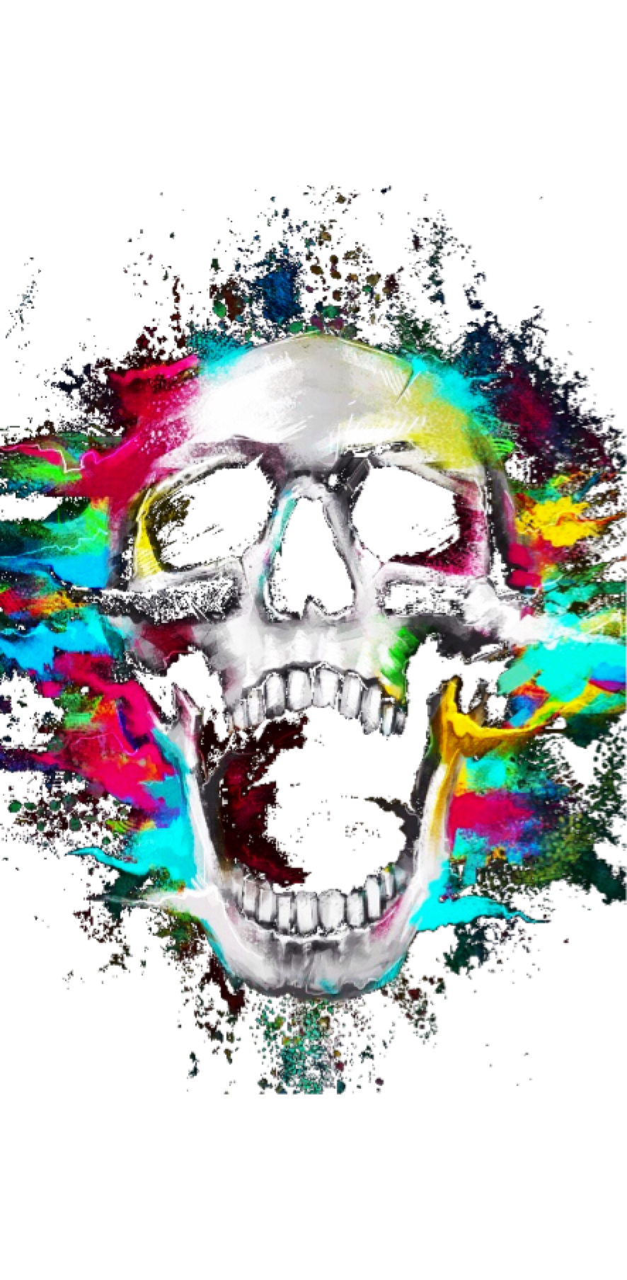 cover Colors Skull