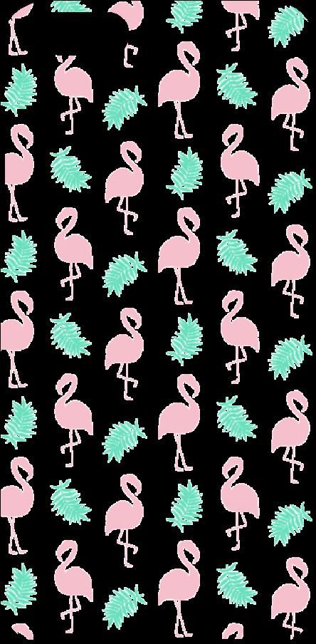 cover Flamingos