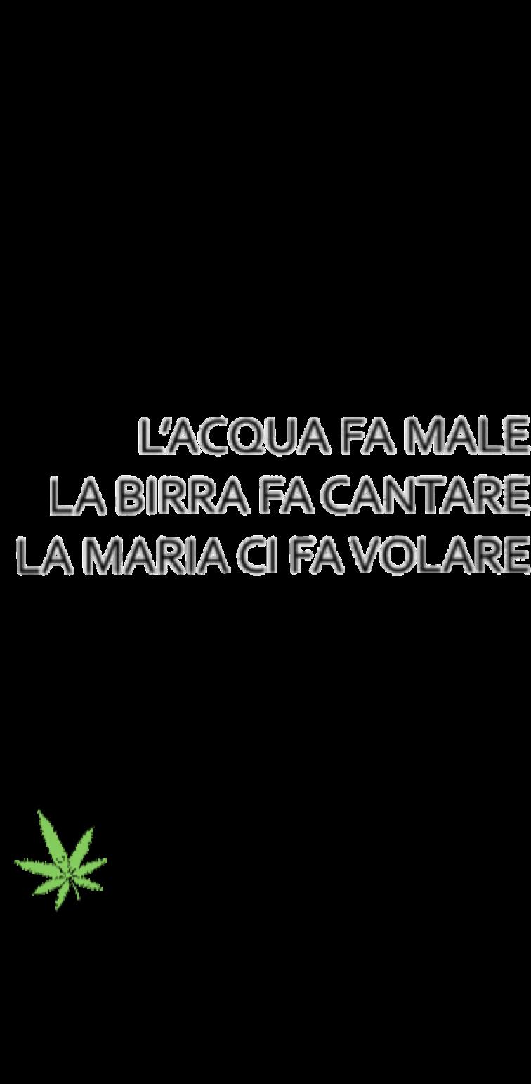 cover #STAYHIGH MARIA CI FA VOLARE