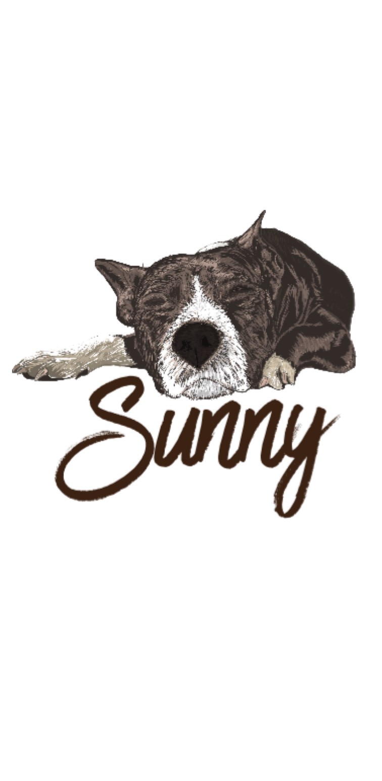 cover Sunny