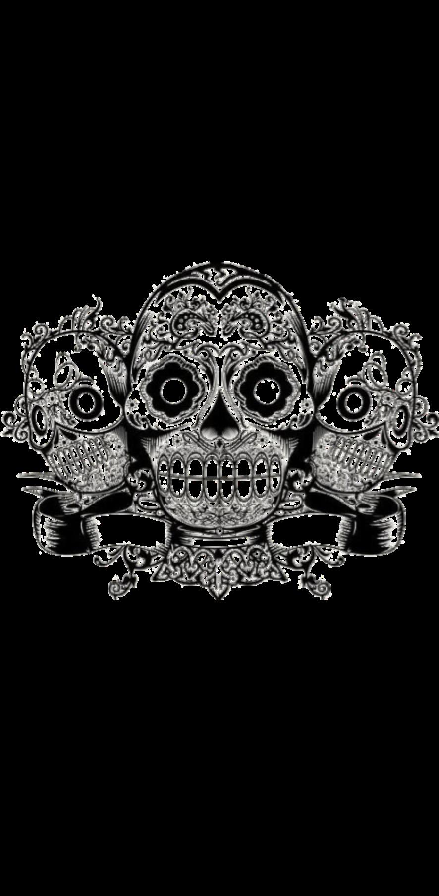 cover Skulls