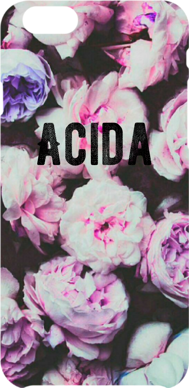 cover rose ACIDA