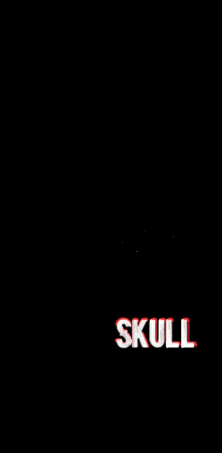 cover MusicSkull®