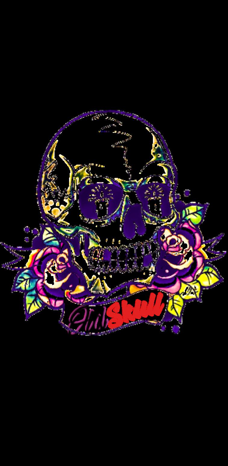cover OldSkull®