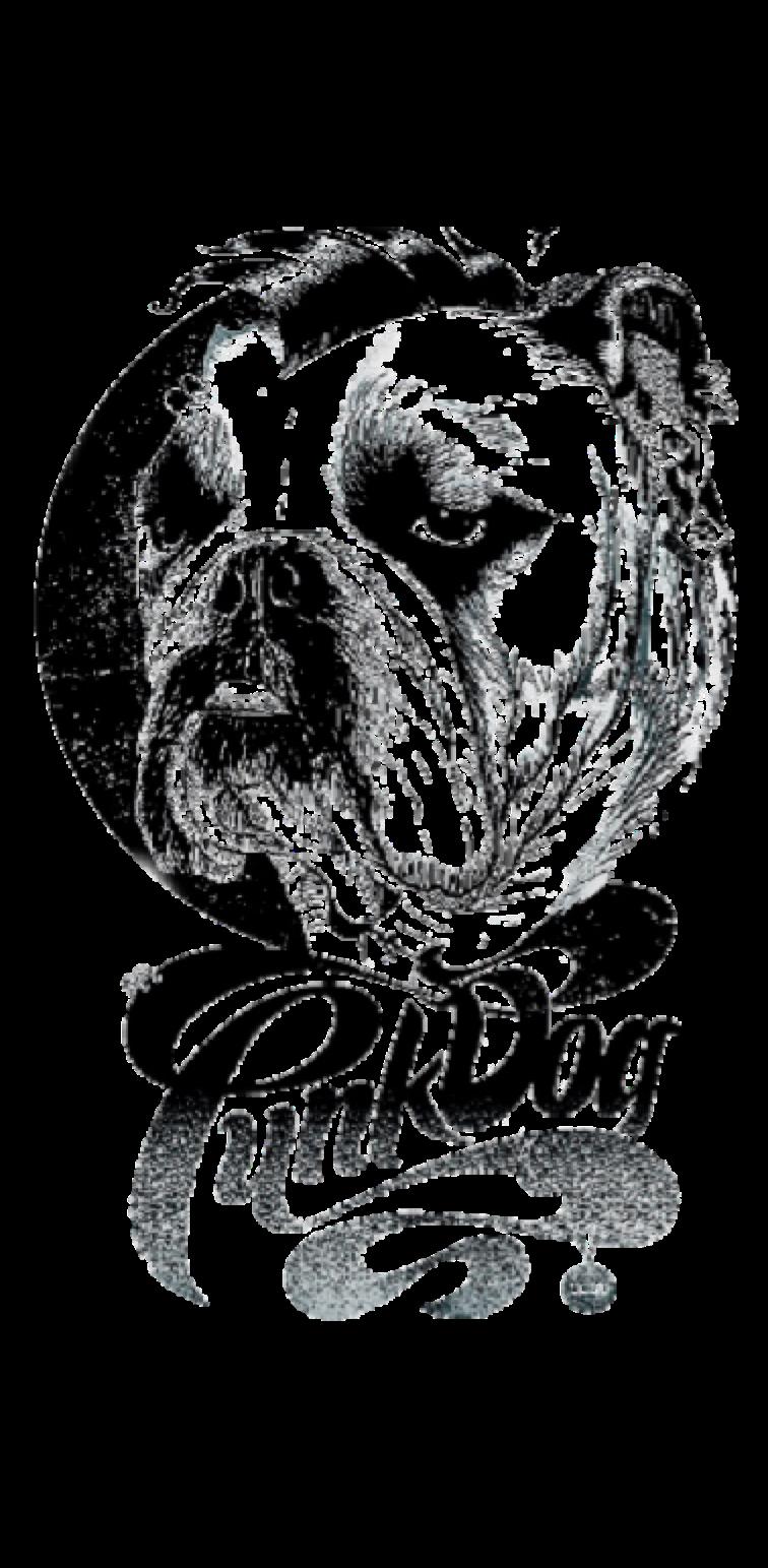 cover PunkDog®