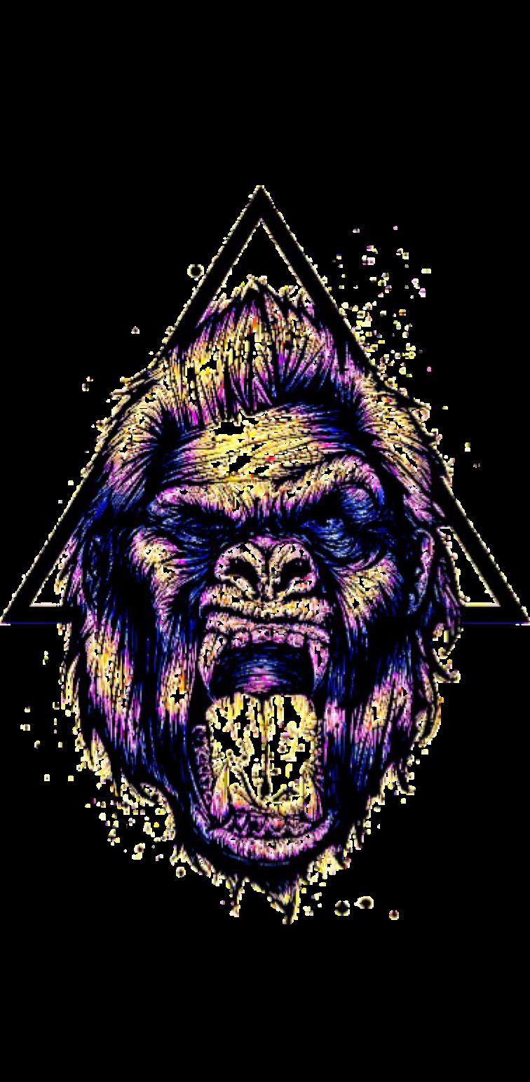 cover Gorilla®