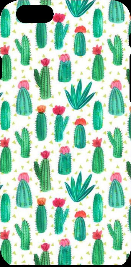 cover Confetto cactus