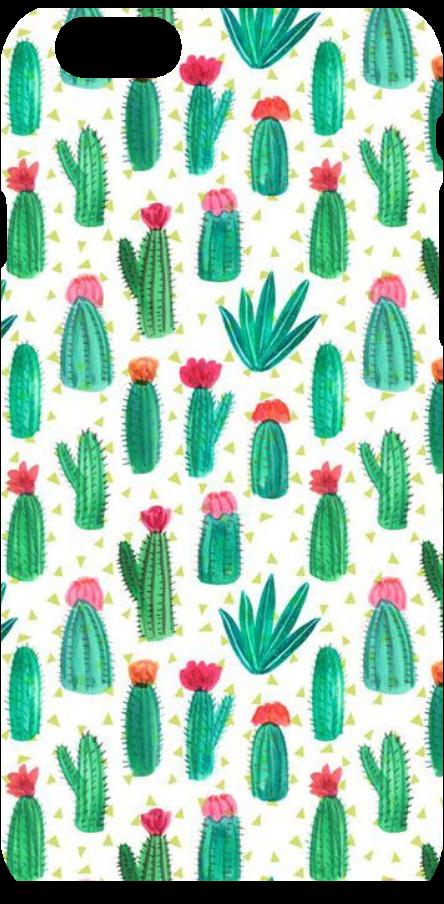 cover Trasparent cactus