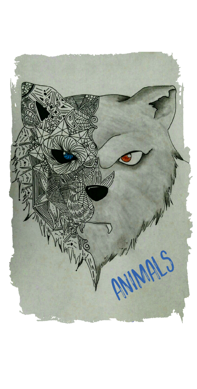 cover ANIMALS