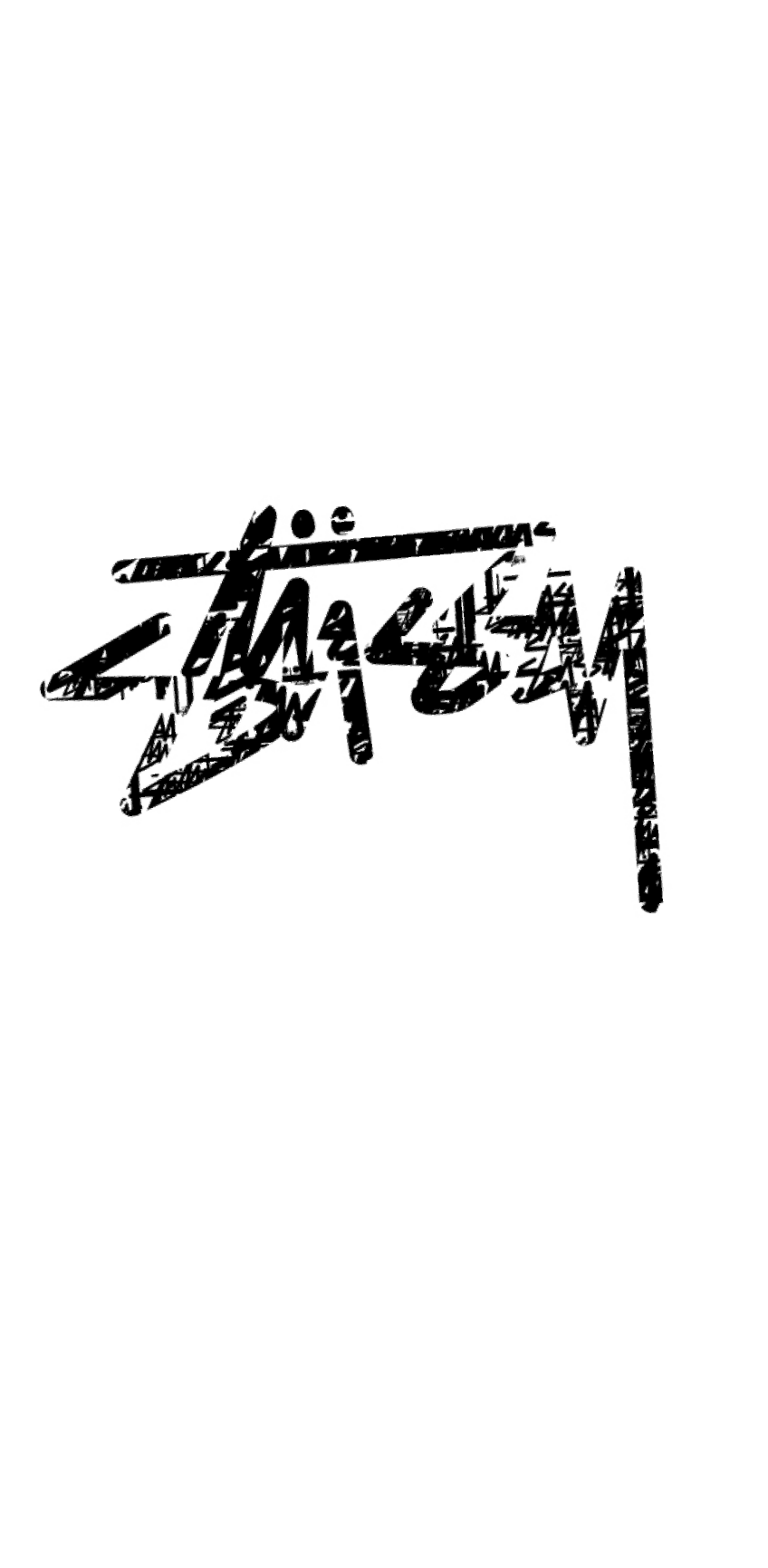 cover stussy cover