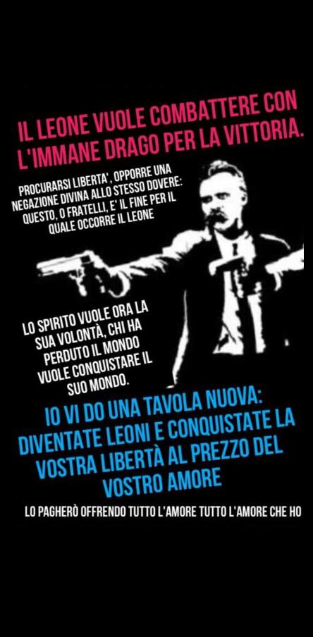 cover Nietzsche Reloaded