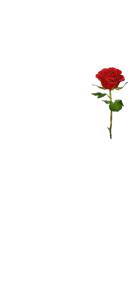 cover that i love all of you