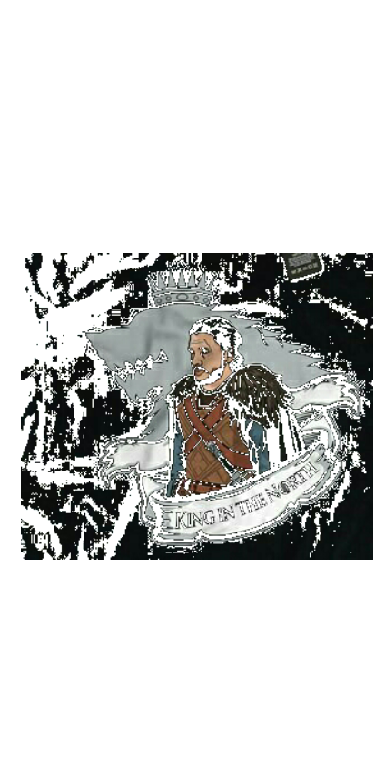 cover The king in the north