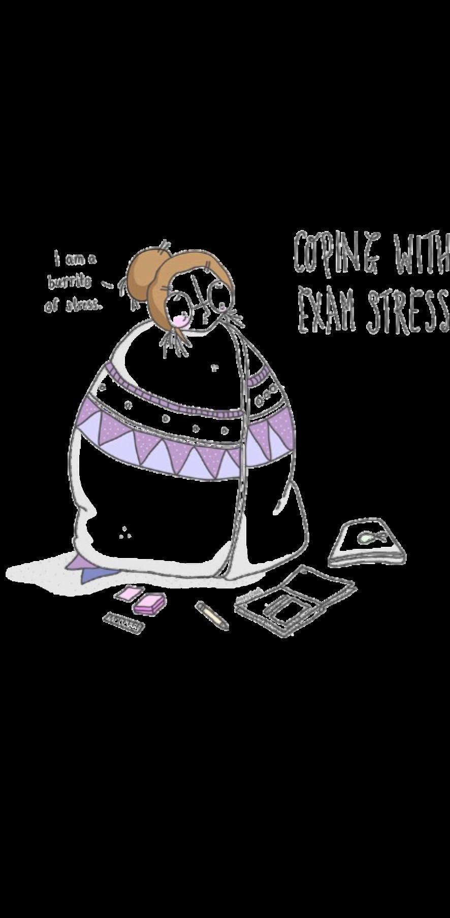 cover exam stress
