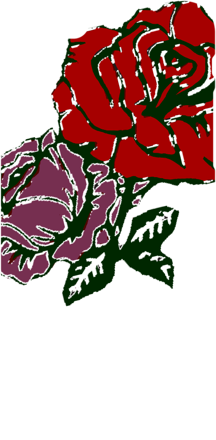 cover ROSES-EVGL®