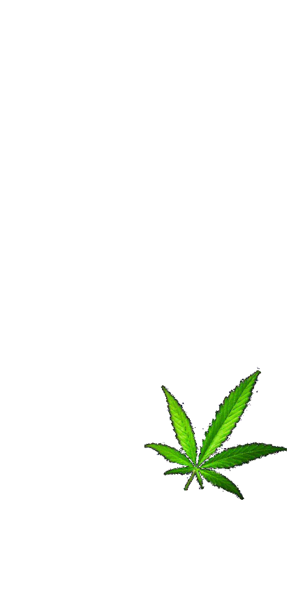 cover malavita way
