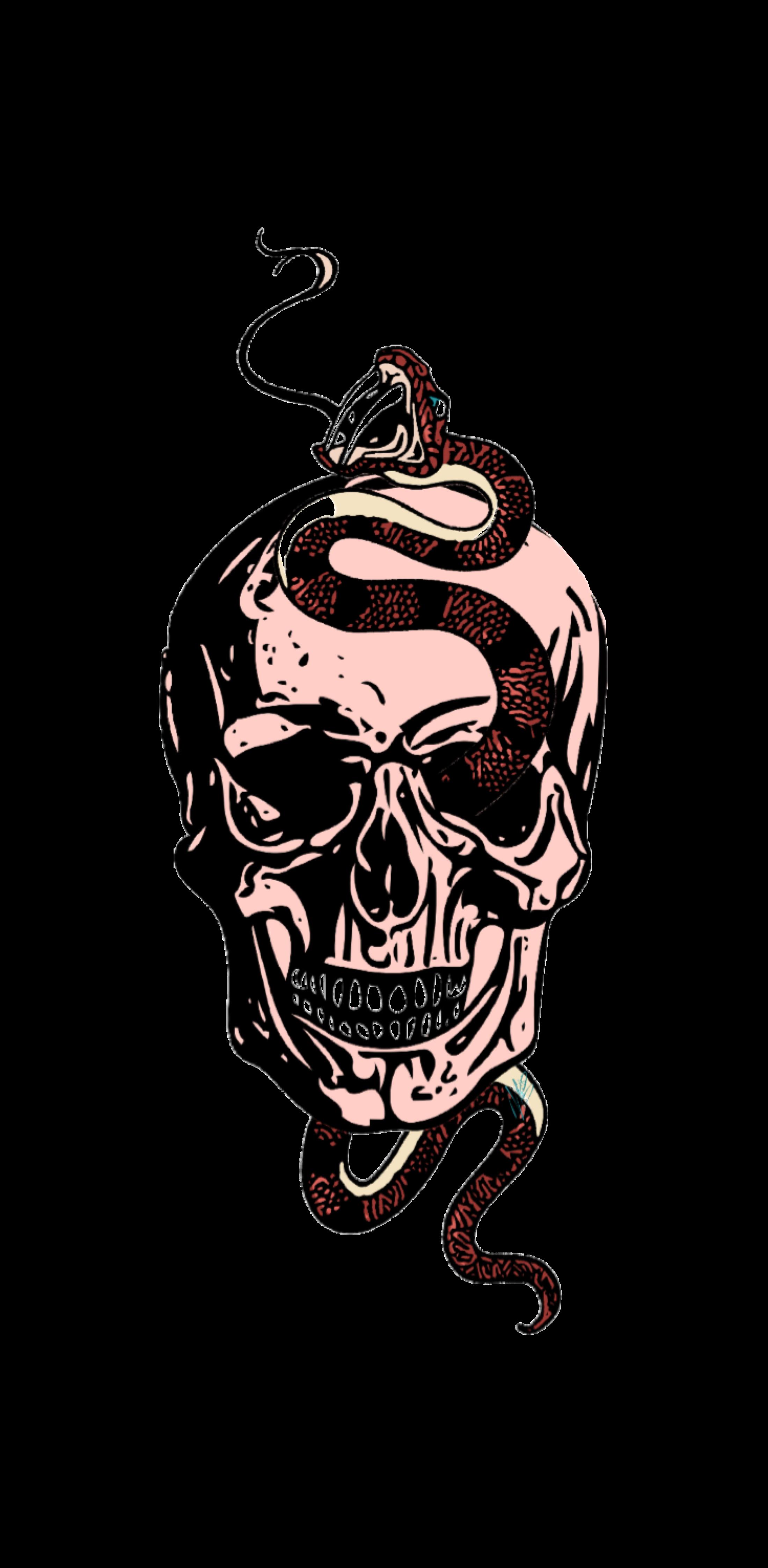 cover skull snake
