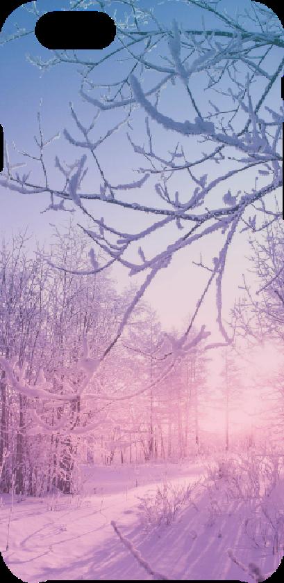 cover winter landscape