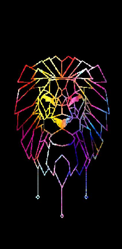 cover LION COLORS