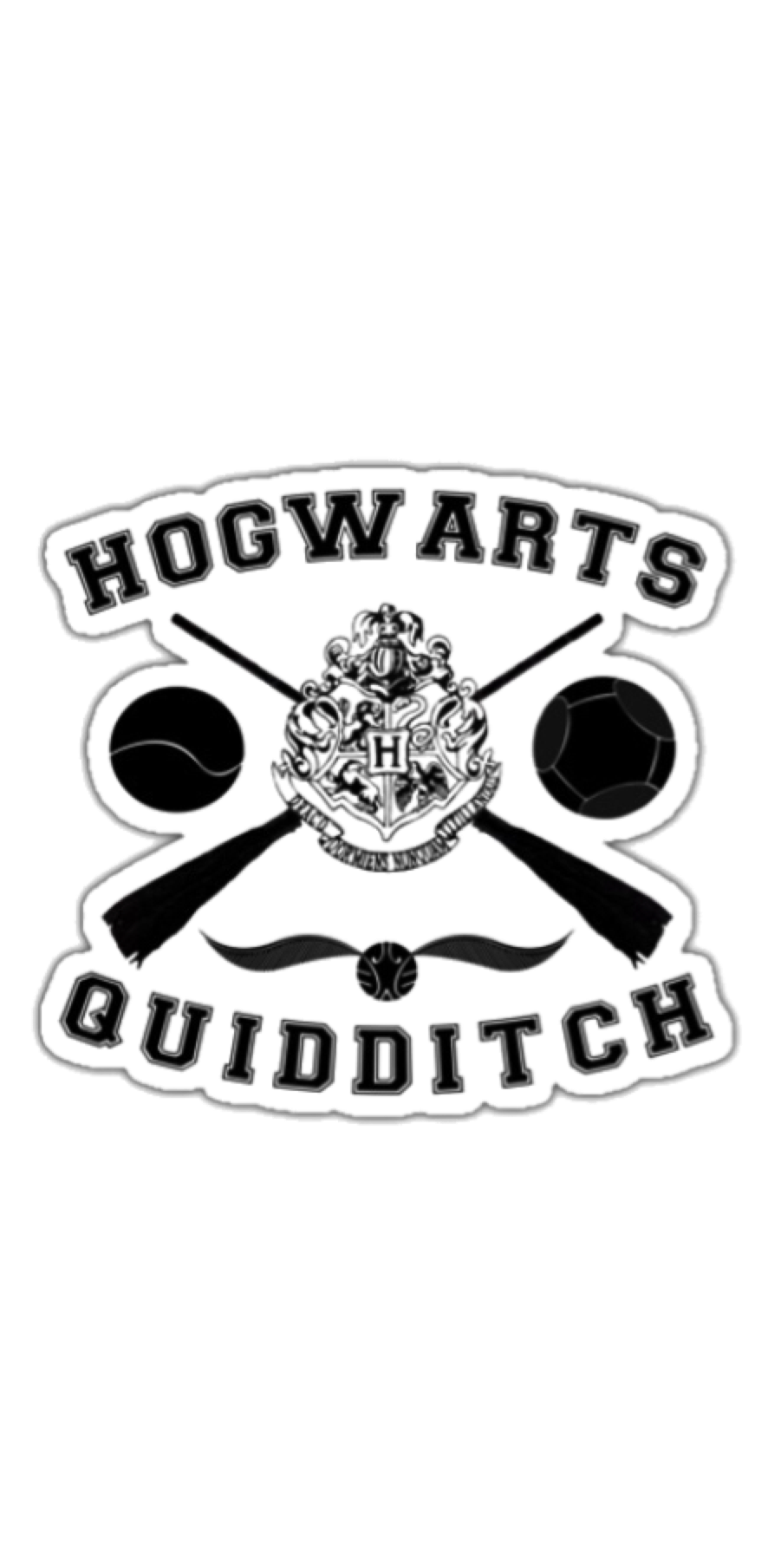 cover quidditch tshirt
