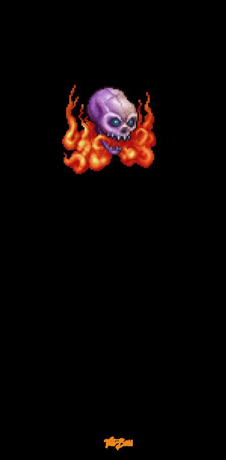 cover FIRE SKULL