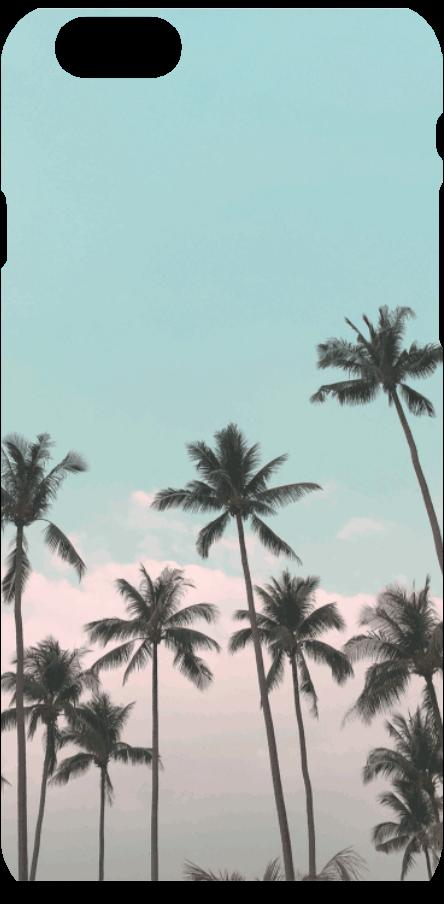 cover A Blue Sky